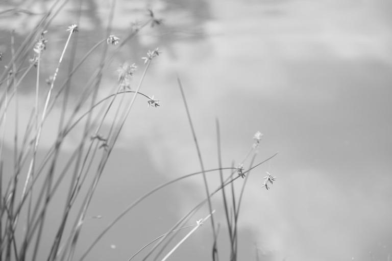 Kate Eschbach Photography-27